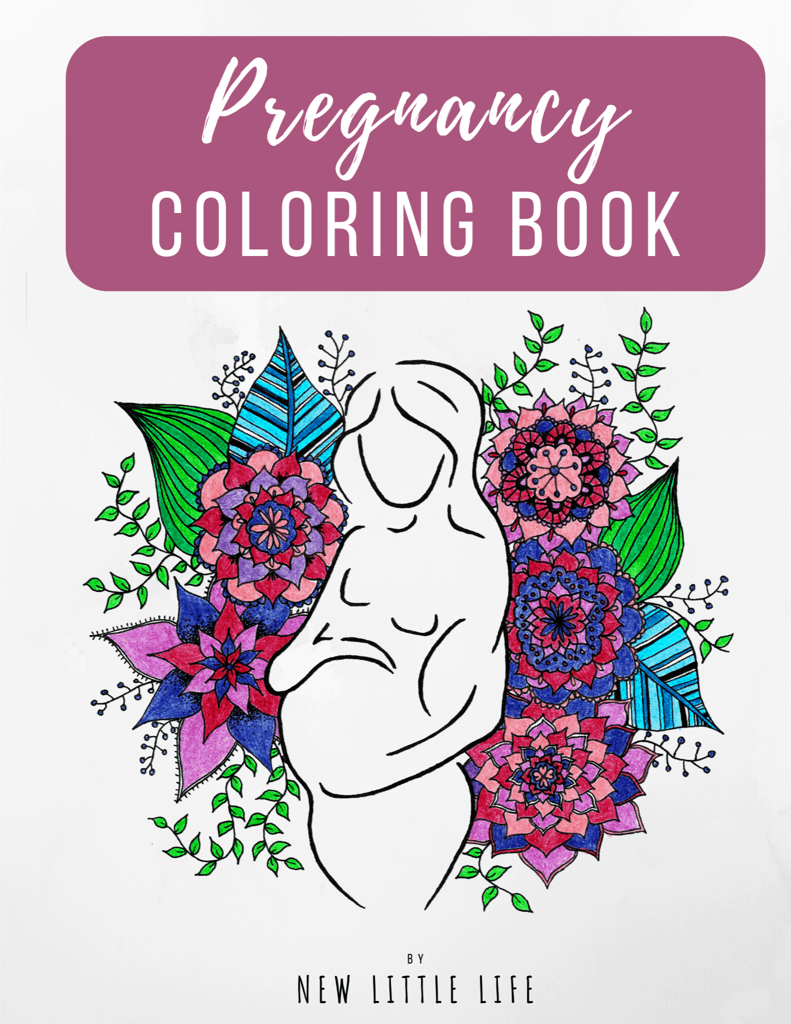 Pregnancy Coloring Book Pdf Download New Little Life
